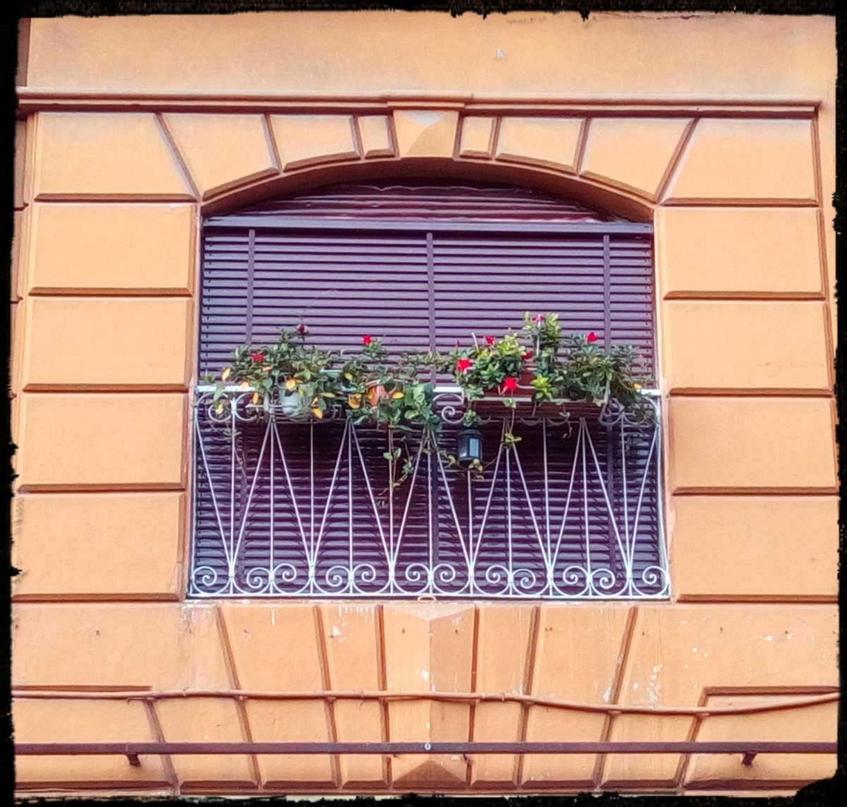 Rome - Windows of Rione Celio