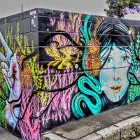 Auckland - Street Art (Part 1)